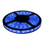 Fita LED 3528 Azul Rolo 5m com fonte 12V 2A