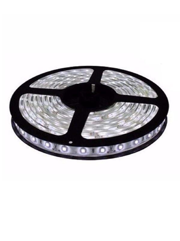 Fita LED 5050 Branco Frio Rolo 5m (somente fita)