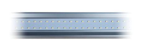 Lâmpada LED Linear 10w BLUE Branco Frio