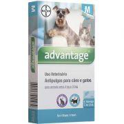 Antipulgas Advantage para Cães e Gatos M (1 Bisnaga)