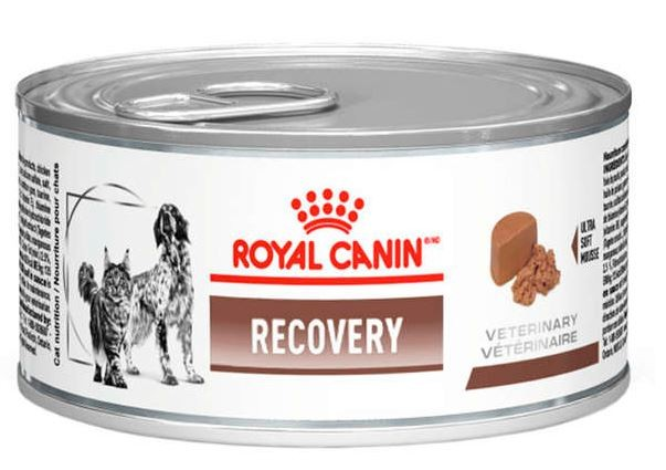 Royal Canin Lata Canine e Feline Veterinary Diet Recovery Wet - 195 g