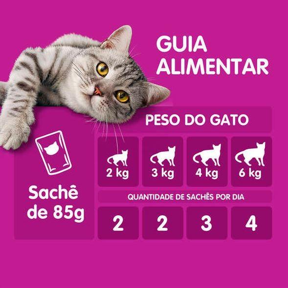 Sachê Whiskas Gatos Castrados Sachê Sabor Carne - 85g