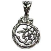 Pingente de Prata de Lei (prata 950) - OM Dragão
