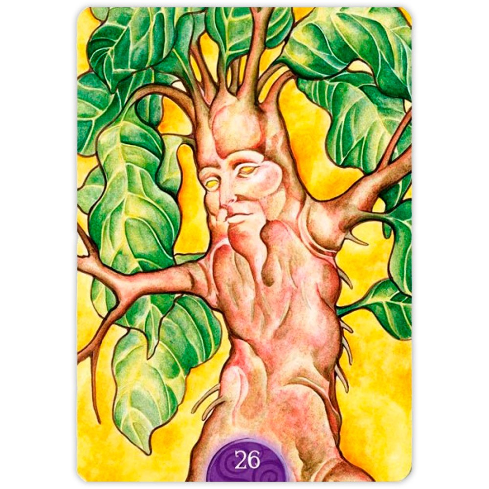 Wicca Oracle Cards - New Edition
