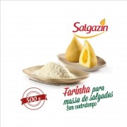 Salgazin® 500g