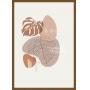 Quadro Decorativo Sem Vidro Abstrato Floral Minimalista 3
