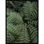 Quadro Decorativo Folhagem Verde para Sala - Planta Samambaia