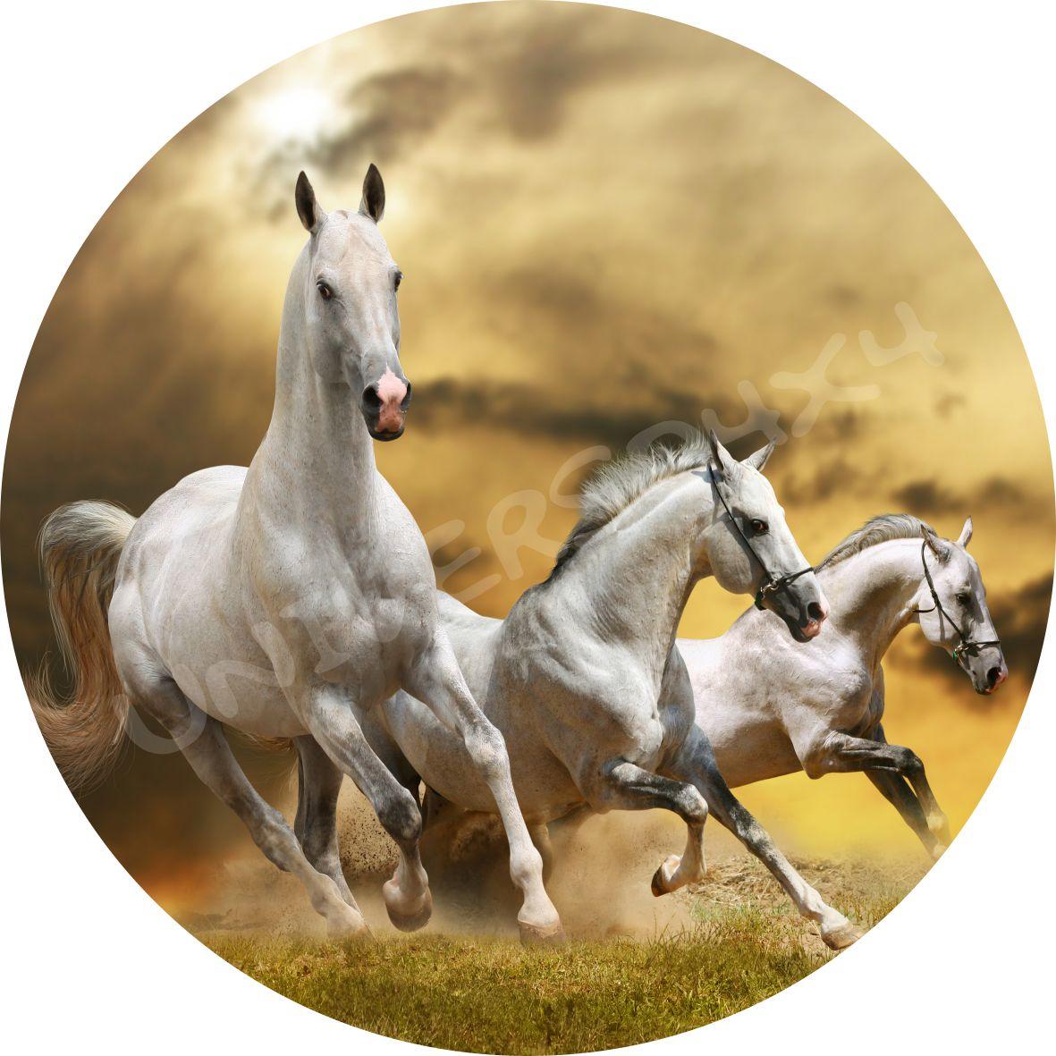 Capa Estepe Cavalo Branco M-2413