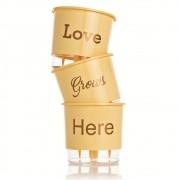 Kit 3 Vasos Autoirrigáveis Love Grows Here Pêssego MÉDIO