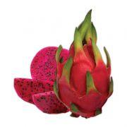 Kit com 5 Mudas de Pitaya Vermelha