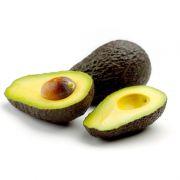 Muda de Abacate Avocado com Cheiro e Sabor de Aniz nas Folhas e Frutos