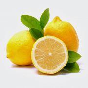 Muda de Limão Siciliano - Enxertadas
