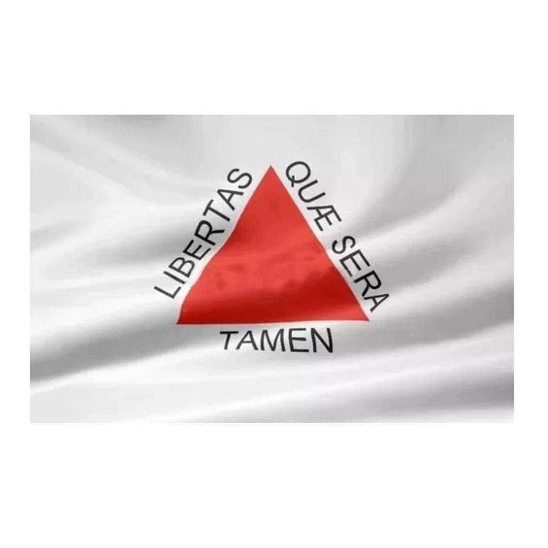 Bandeira de Minas Gerais - 3 Panos - 192 x 135 cm - Oficial