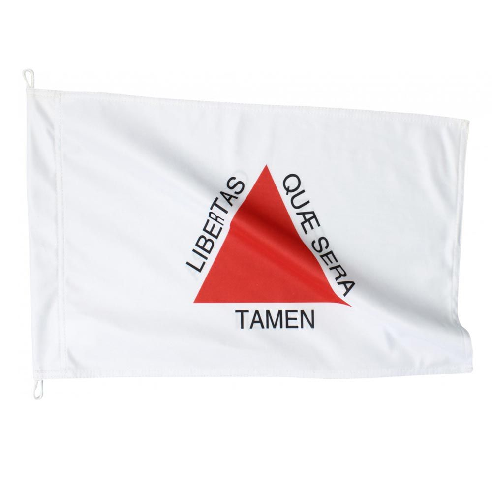 Bandeira de Minas Gerais- 2 Panos - 128 x 90 cm - Oficial  - Loja do Competidor