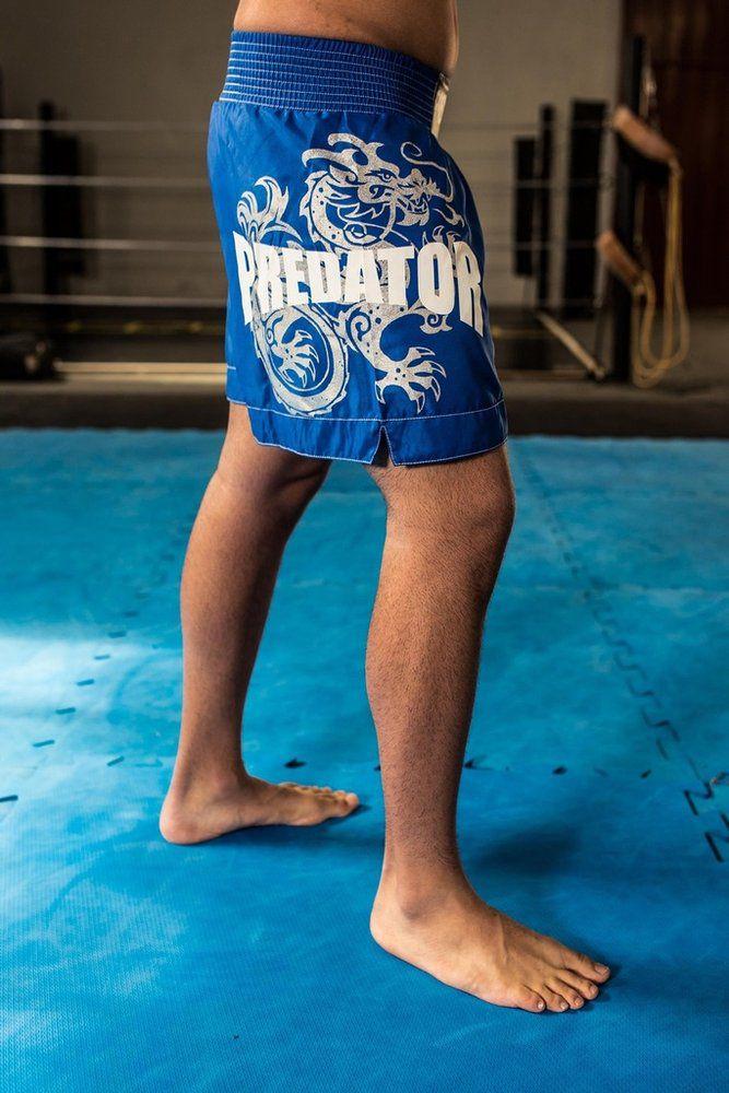 Calção Short Muay Thai - Drago - Unissex - Azul - Predator -  - Loja do Competidor