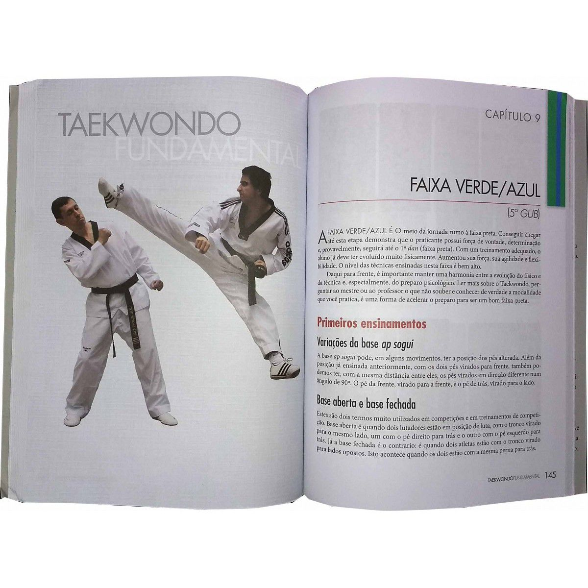 Livro Taekwondo Fundamental - Mestre Carlos Negrão .  - Loja do Competidor