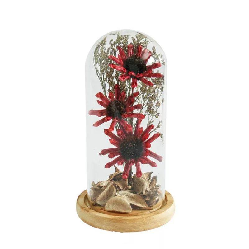 Luminária Cúpula de Vidro Flores Secas com Base De Madeira