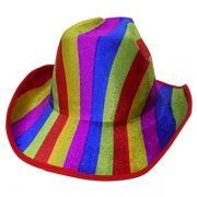 Chapeu Cowboy Kit Com 5 Colorido Festa Carnaval Baile Fantasia (BSL-2544-9)