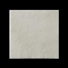 Curativo Alginato e Prata Biatain Ag 10x10cm Coloplast