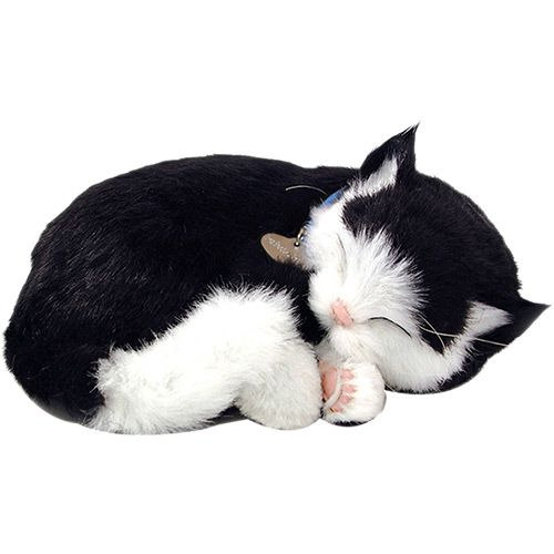 Pelúcia Gato Preto e Branco - Perfect Petzzz