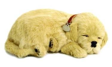 Pelúcia Labrador Retriver