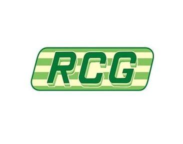 Controle remoto RCG 433.92MHZ Saw para motor de portão