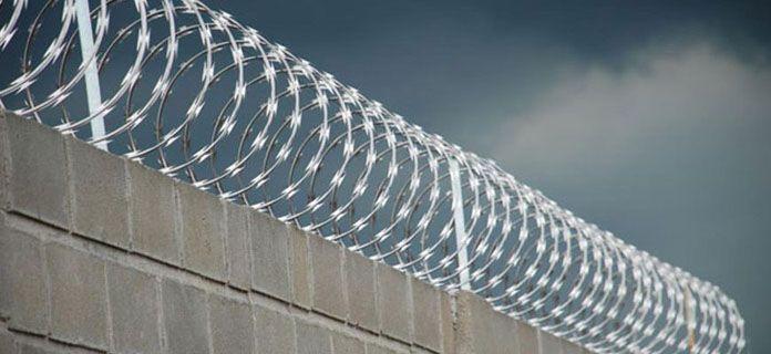 Rolo Cerca de Ouriço/concertina Galvalume 30cm - Faz Até 10 Metros  - Esferatronic Comercio e Distribuição