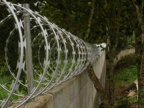 Rolo Cerca de Ouriço/concertina Galvalume 45cm - Faz Até 10 Metros
