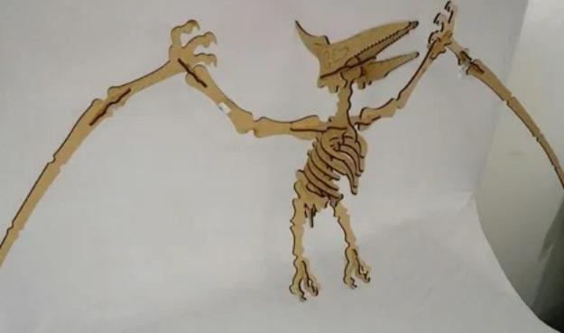 Kit 4 Dinossauros - Allosaurus + Velociraptor + 2 Pterodactyl + Esqueleto Humano