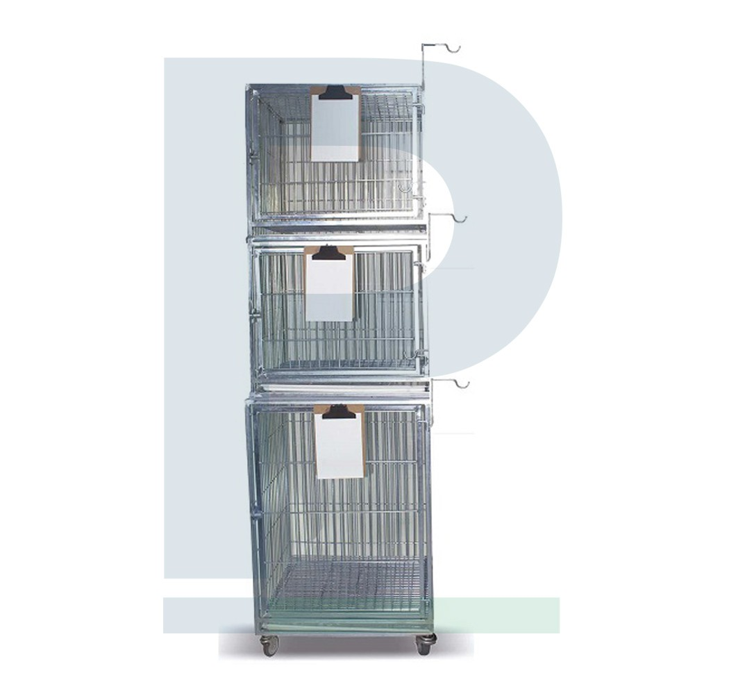 Canil de Ferro para 03 Animais - Suporte de Soro e Suporte de Prancheta