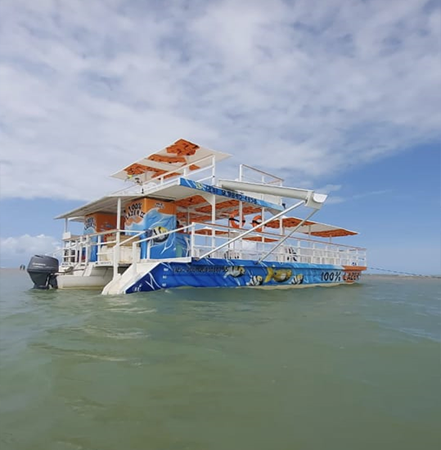 Passeio para a Ilha de Areia Vermelha de Catamarã - Cabedelo, PB