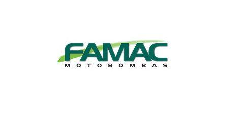 Bomba Submersível Efluentes Fbs-ng 300f 1cv Monofásica Famac