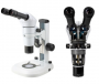Infinity parallel zoo stereo microscopes - SÉRIE SZ800