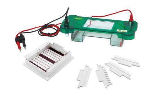 Cuba para Eletroforese Horizontal 10 cm com Bandeja Interna Removível - Modelo: DGH-10