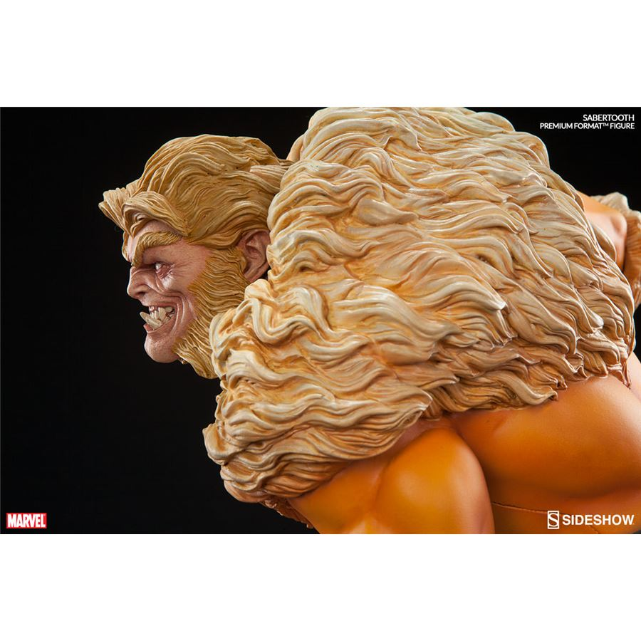 Estátua Sabretooth (Dentes de Sabre) Premium Format Escala 1/4 - Sideshow