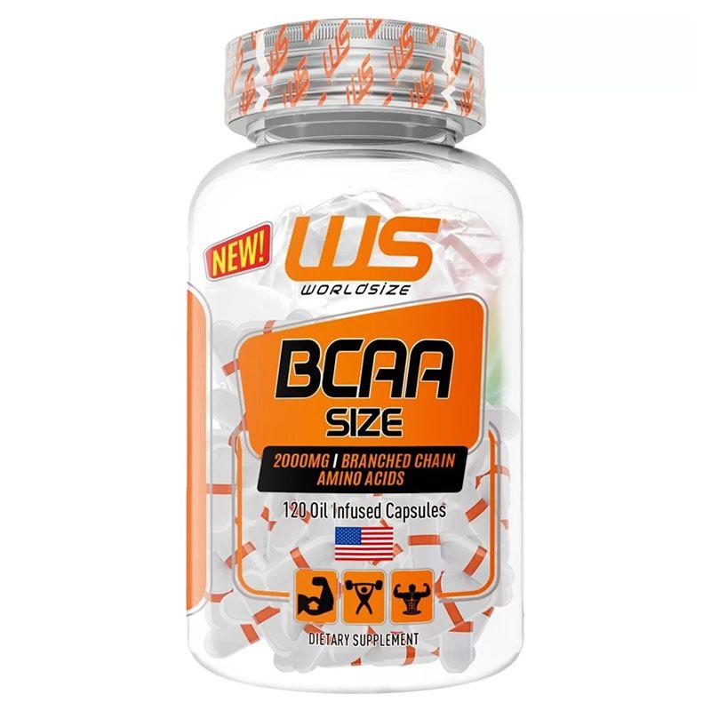BCAA Size 120 Cápsulas - World Size