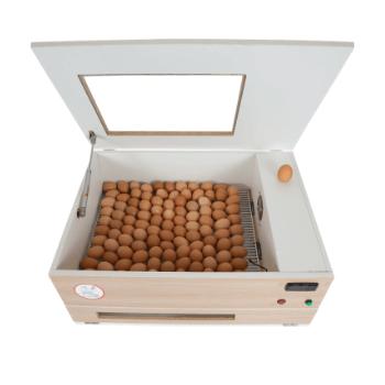 Chocadeira ALTA ECLOSÃO Automática 120 ovos Bivolt BOX com controle de Umidade (GCB120U)  - GALINHA CHOCA CHOCADEIRAS
