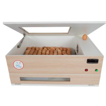 Chocadeira ALTA ECLOSÃO BOX 6 Ventiladores Bivolt PID 120 ovos BOX (GCB120)