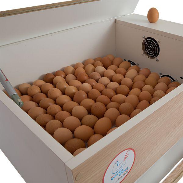 Chocadeira ALTA ECLOSÃO BOX Trivolt com Carregador Embutido 120 ovos 6 ventiladores (GCB120TC)