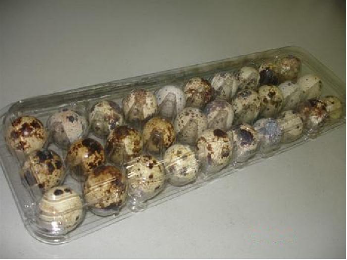 Embalagem Codorna 30 Ovos  (100 - 500 - Unidades)