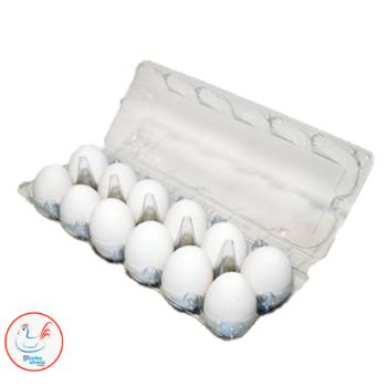 Embalagem Galinha 12 Ovos (100 - 500 pçs)