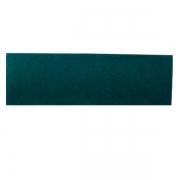 Pacote com 10 Fibras de Limpeza Geral Verde Para Suporte LT 41x13 cm
