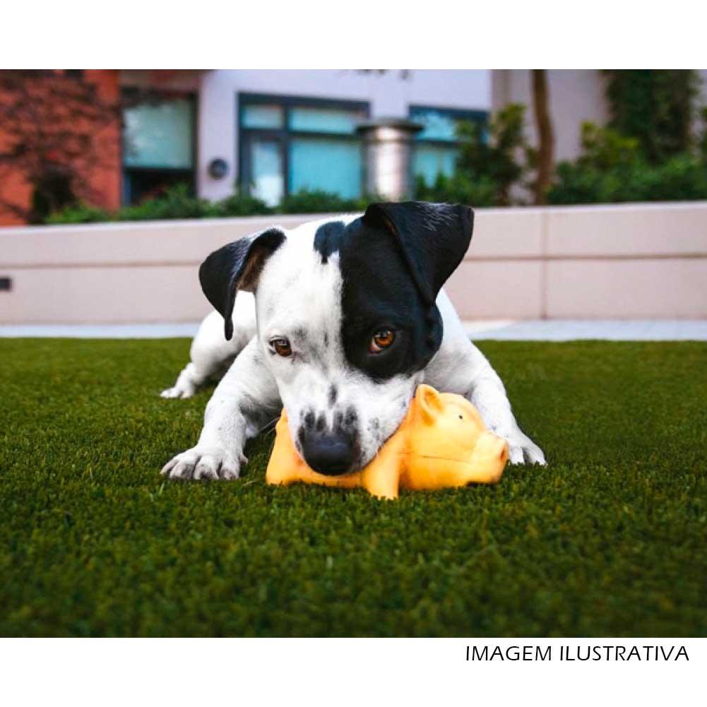 Brinquedo Mordedor Pet Porco Sonoro - Rosa 14,5cm  - Shop Ud