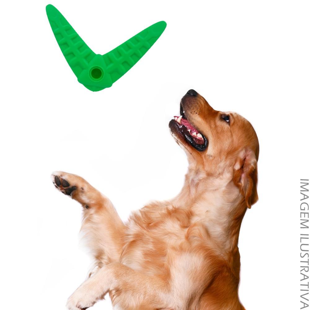 Brinquedo Pet Mordedor Bumerangue - Verde 14x17cm  - Shop Ud