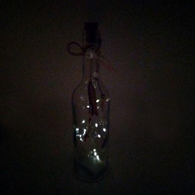 Luminária Led Garrafa Com Corda  peixe  - Shop Ud