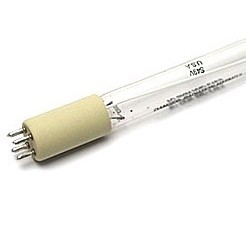 Cod.G012 - Lâmpada Germicida UV-C TUV36 T5 4P HO - 75W PHILIPS  - lampadas.net