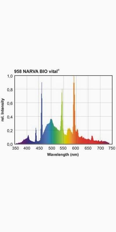 Cod.LT39T5/958 - Lâmpada Bird - Biovital 39W (UV-A -UV-B)  - lampadas.net