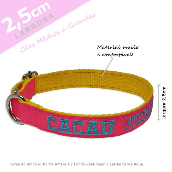 Coleira Identificação Personalizada Cachorro - Largura 2,5cm - M  - PetPatuá | Coleiras e Tags para Identificação