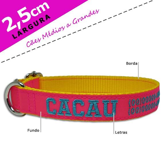 Coleira Identificação Personalizada Cachorro - Largura 2,5cm - M - Preta [01 COLEIRA]  - PetPatuá   Coleiras e Tags para Identificação