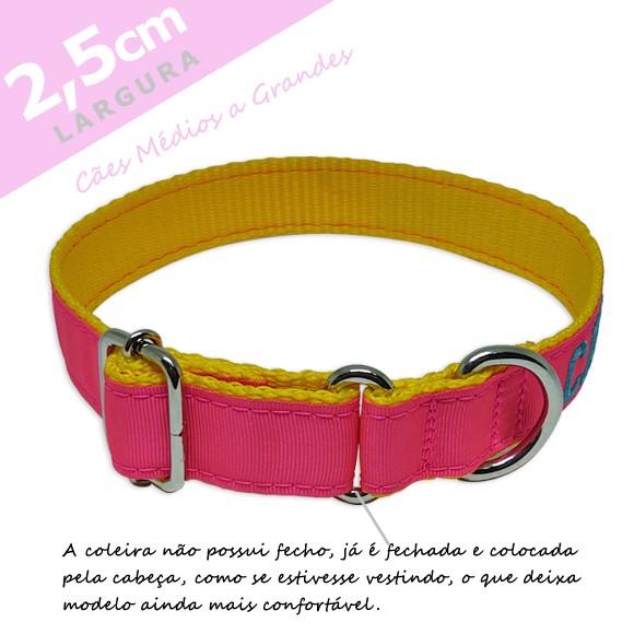 Coleira Identificação Personalizada Cachorro - Largura 2,5cm - M - Preta [01 COLEIRA]  - PetPatuá | Coleiras e Tags para Identificação
